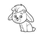 Desenho de Um coelho de campo para colorear