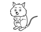 Dibujo de Um pequeno criceto